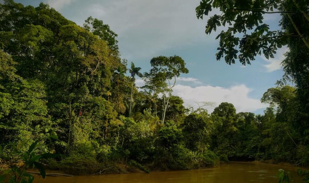 Reserva de Biosfera Yasuni